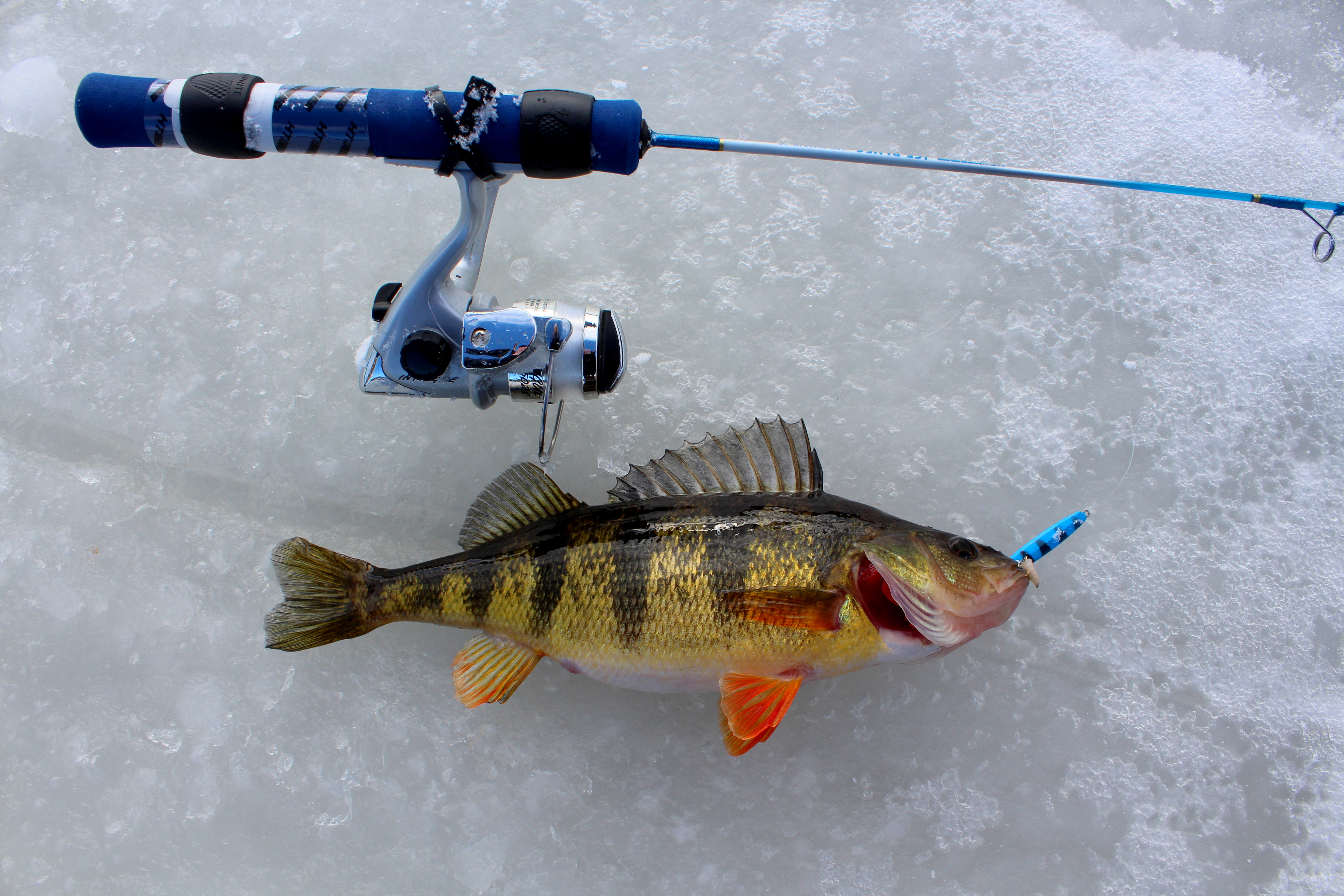301 moved permanently for Ice fishing clothing